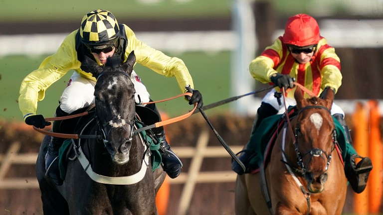 Elixir De Nutz (left) gave 10lb and a beating to Jarveys Plate, who won by 13 lengths next time out