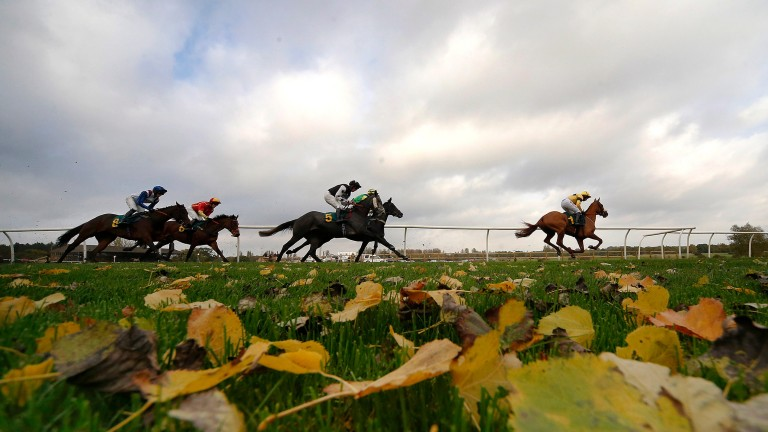 Fakenham looked picture perfect on New Year's Day