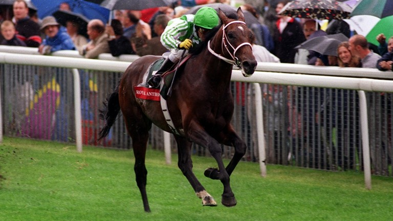 Royal Anthem storms clear to win the 1999 Juddmonte International by eight lengths
