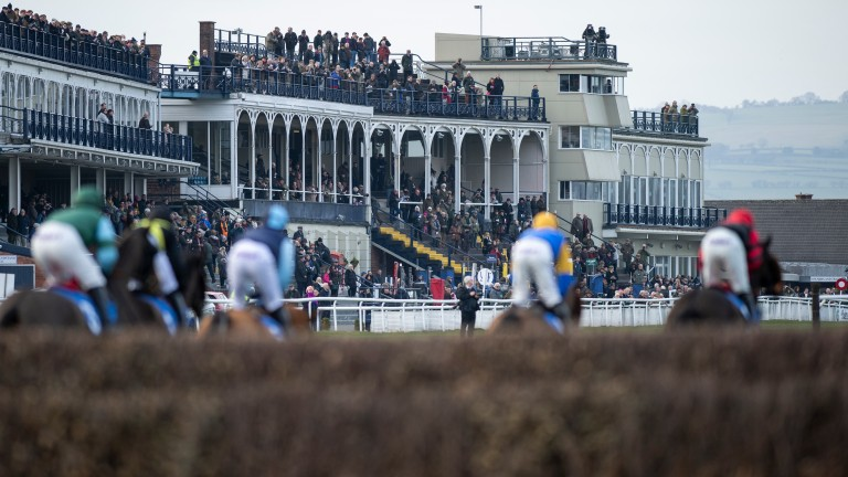 Ludow hosts seven races on Monday