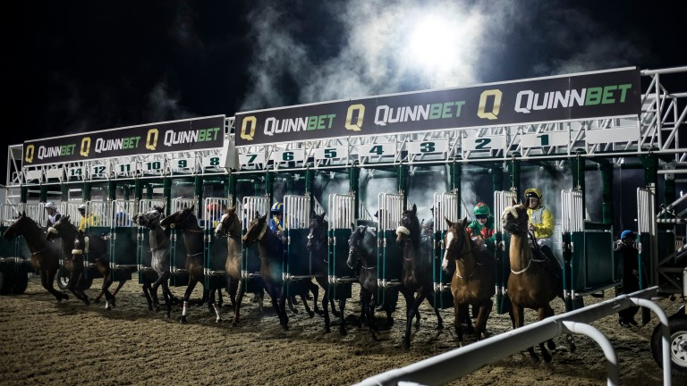 Dundalk: eight races at the all-weather track on Friday evening