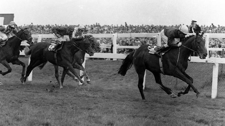 Peleid: landed the 1973 St Leger under Frankie Durr