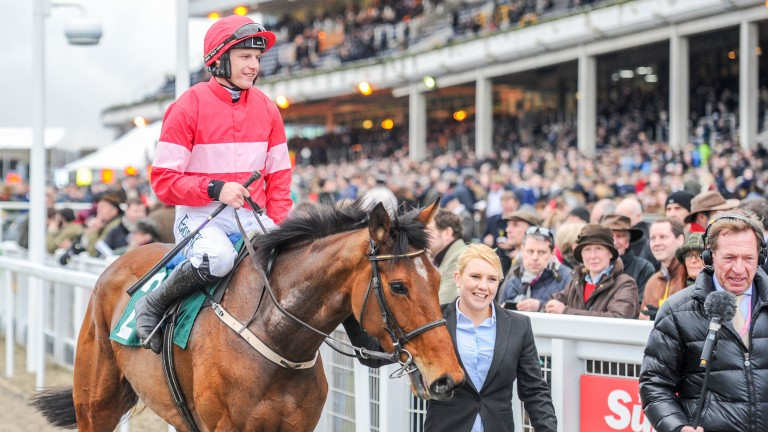 Laurina: the hot favourite for the Listed mares' hurdle at Sandown on Saturday