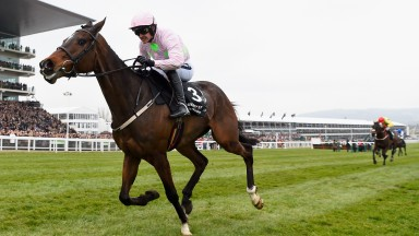 Ruby Walsh brings Douvan home clear of his field in the 2016 Arkle at the Cheltenham Festival