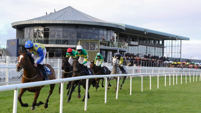 Naas: hosts a top-class card today