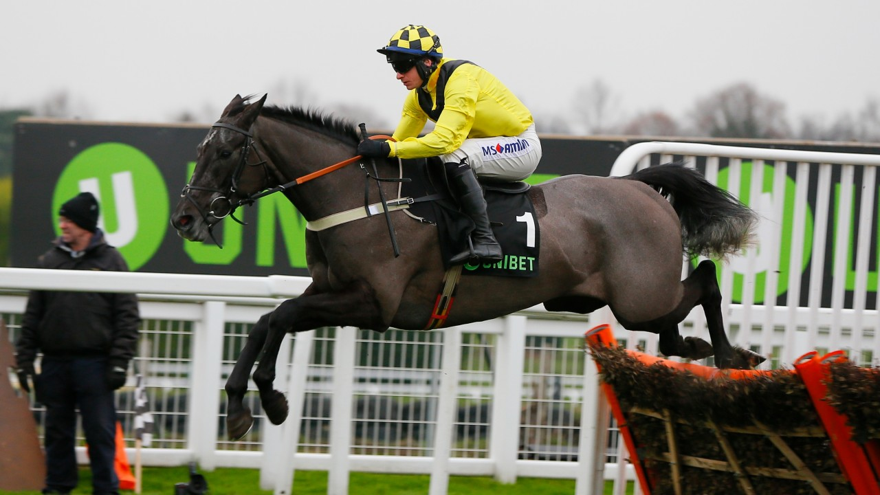 Late blow for Colin Tizzard as Elixir De Nutz is ruled out of the