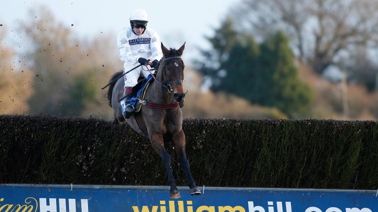 Fox Appeal: won twice at Taunton previously