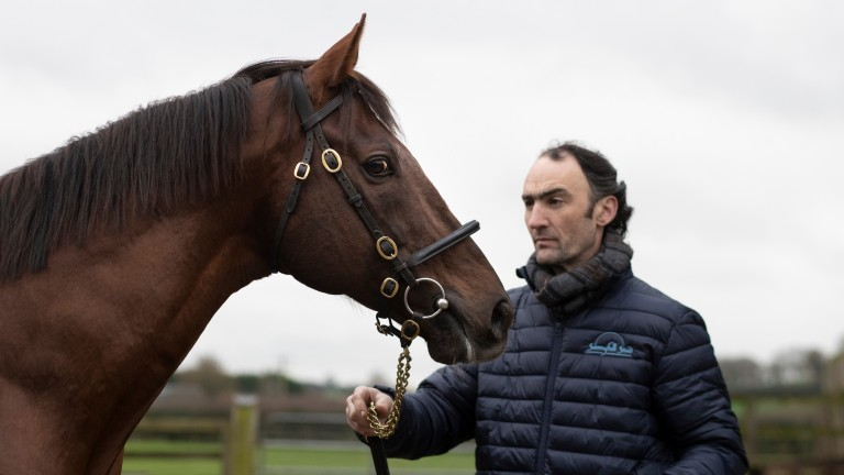Michael Hickey with Casamento at Sunnyhill Stud