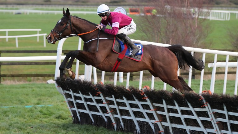 Vision D'honneur: a comfortable winner at Punchestown last time
