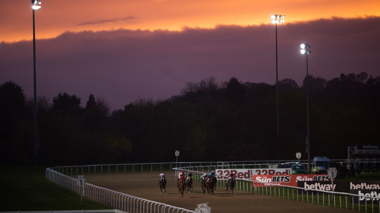 Young jockey Oliver Stammers continued his resurgence at Wolverhampton on Sunday