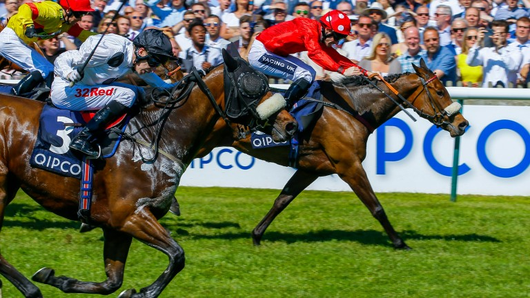 Judicial (near side) is just caught by Mabs Cross with Alpha Delfini back in third in the Palace House Stakes at Newmarket last May