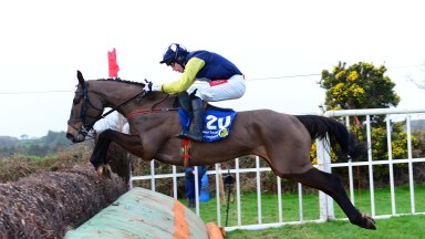 Aghabullogue PTP 13-1-19 PRESENTANDCOUNTING & Derek O'Connor jump the last to win the 5YO Geldings Maiden Race (Photo Healy Racing)
