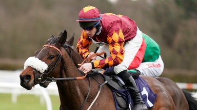 Emitom: made it four from four at Lingfield on Tuesday