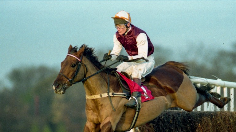 Waterloo Boy and Richard Dunwoody on route to Tingle Creek victory