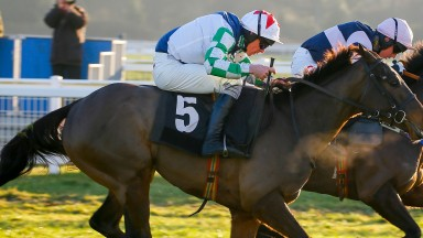 Potters Corner: represents Christian Williams in Somerset National