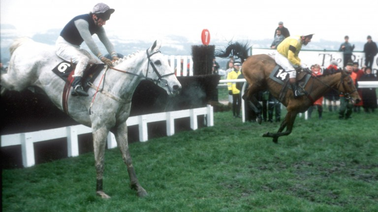 Desert Orchid and Simon Sherwood clear the last en route to Gold Cup victory from Yahoo