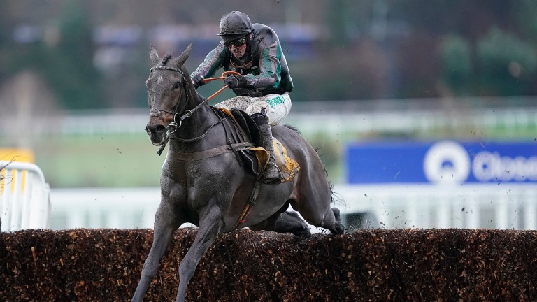 Altior: faces just two rivals in the Matchbook Clarence House Chase at Ascot