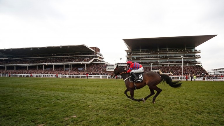Sprinter Sacre conquers the Cheltenham hill to land the 2018 Queen Mother Champion Chase