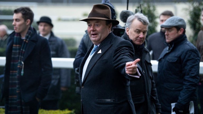 Nicky Henderson: pointing the way to the next 100 winners after completing his quickest century with a four-timer on Saturday