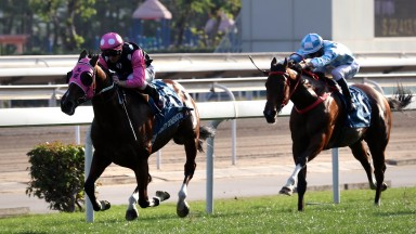 Beauty Generation pulls clear of Conte to win The Stewards' Cup