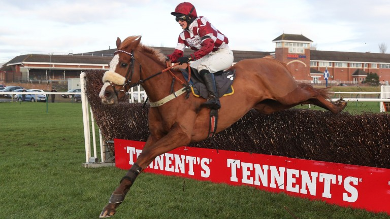 Geronimo: Ryan Mania's ride in the Peter Marsh Chase