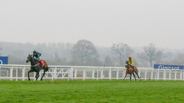 Fox Norton (right): was favourite for the Betfair Exchange Chase at the time of its cancellation after this promising comeback behind Altior