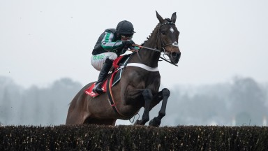Altior (Nico de Boinville) jumps to the left as he negotiates the last fence when winning the Clarence House ChaseAscot 19.1.19 Pic: Edward Whitaker