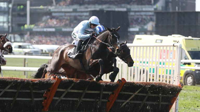 """Black Op: """"Cheltenham will be the big target now - that run will put him right,"""" says trainer Tom George"""