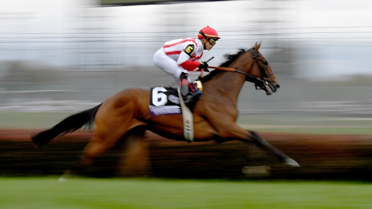 Newspaperofrecord took her second Grade 1 prize at Belmont on Saturday
