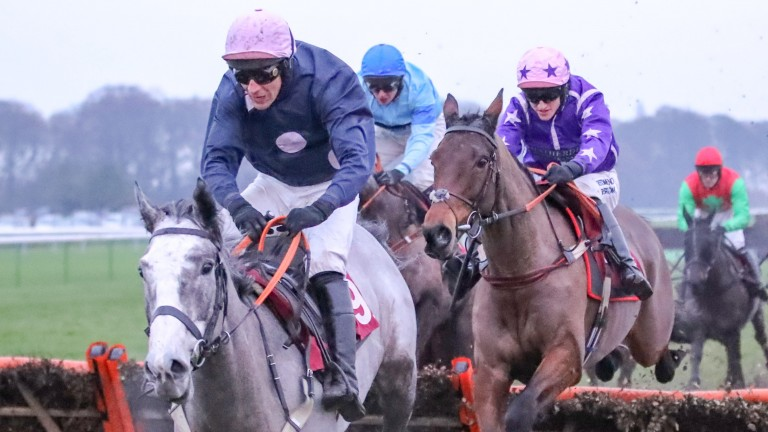 Closing Ceremony (purple silks) trails Silva Eclipse over the final flight of what proved to be a thrilling climax to Saturday's Scoop6 bet