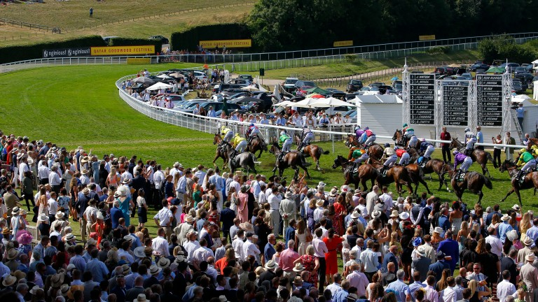 Packed crowds at Goodwood watch Gifted Master win the Stewards Cup