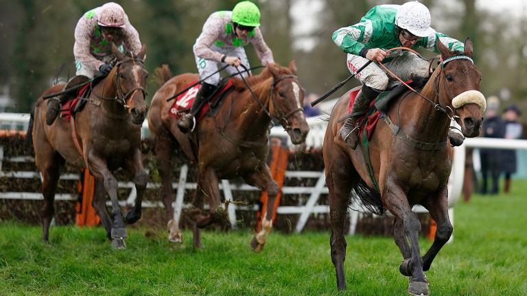 Presenting Percy: trimmed for the Gold Cup in March after victory at Gowran