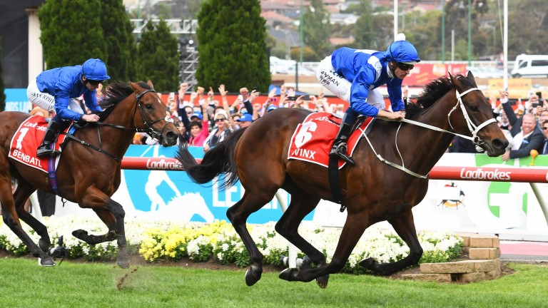 Winx: Australia's superstar is bidding to bow out on a high