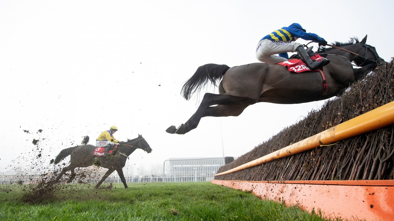 Champion Chase could be on the horizon for Nicholls