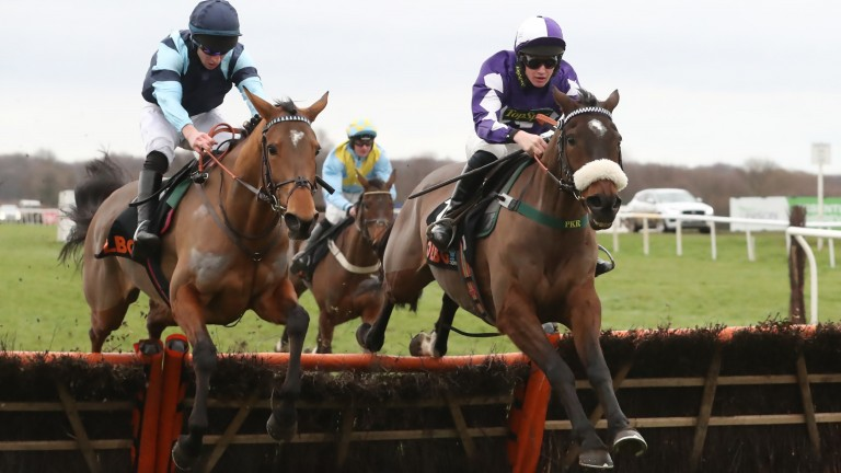 Lady Buttons: landed a Grade 2 prize under Tommy Dowson at Doncaster on Saturday