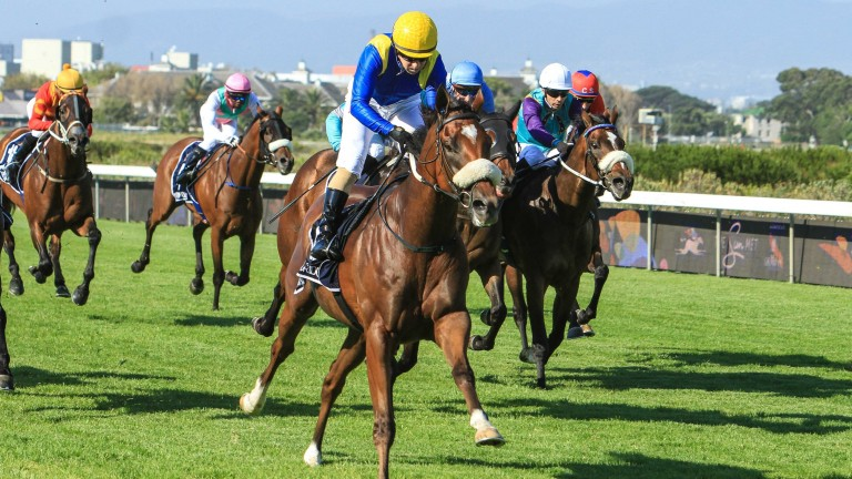 South Africa will not resume racing on Saturday