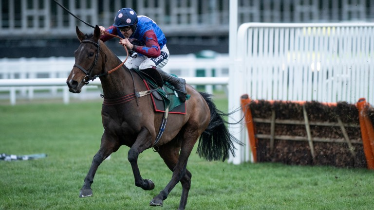 Ears pricked: Paisley Park (Aidan Coleman) out on his own after the last on his way to winning the Cleeve Hurdle at Cheltenham on Saturday