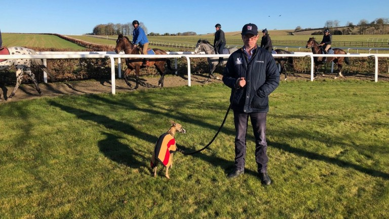 Osborne opted to put Bobby on a lead to watch the fourth lot