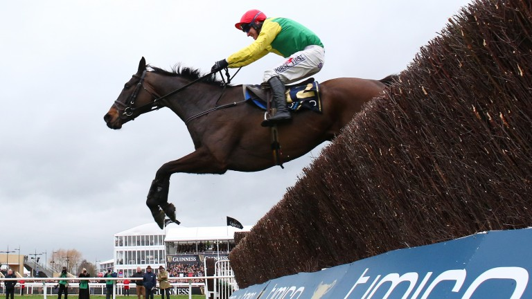 "Jessica Harrington on Sizing John: ""It's a huge shame but hopefully he'll be back next year."""