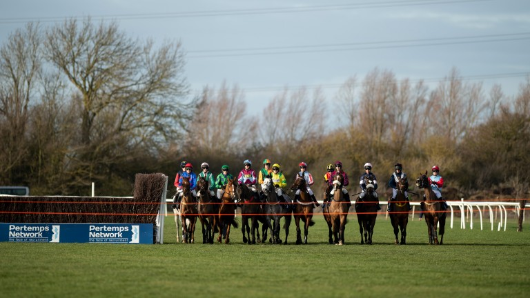 Runners and riders line up at the start at Huntingdon on Friday