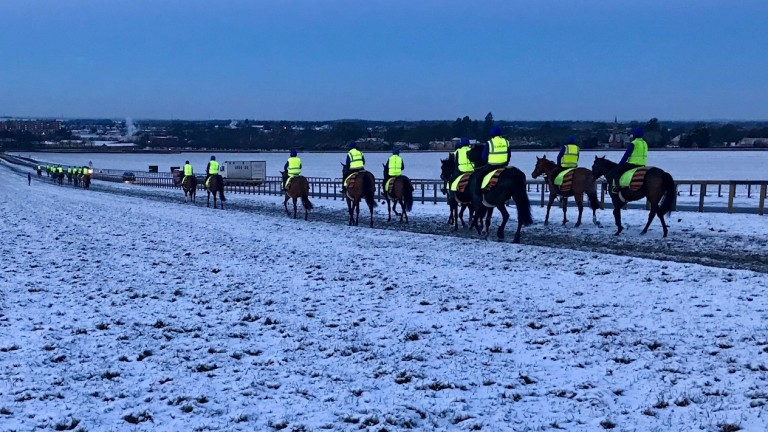 Saeed Bin Suroor's team head home in the snow at first lot.