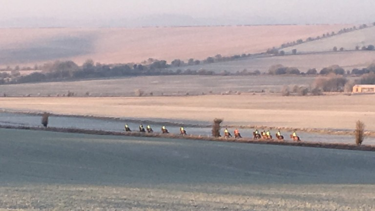Eve Johnson-Houghton's string working on the gallops after temperatures hit as low as -8C