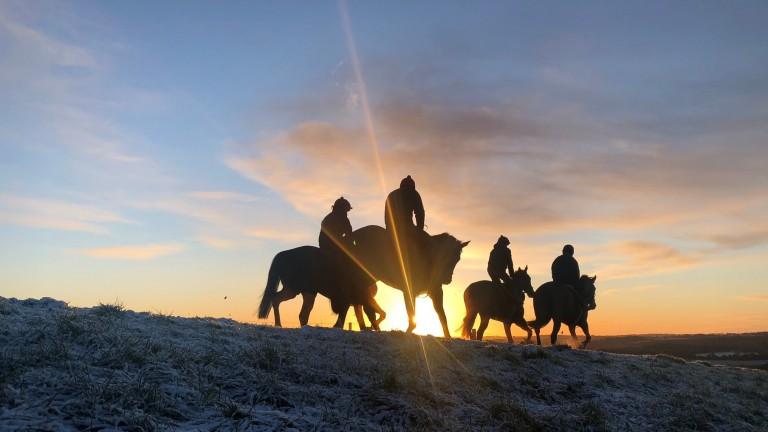 The sun starts to rise as Fergal O'Brien's string prepare for work