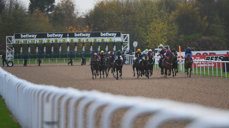 Wolverhampton: hosts afternoon meeting on Monday