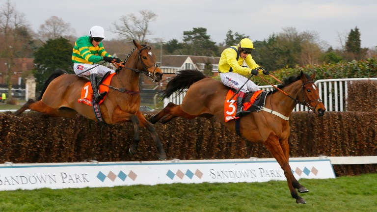 Defi Du Seuil (left): scored for the first time in Grade 1 company over fences