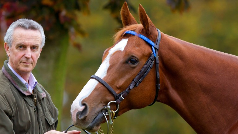 Jim Bolger: saddles a three-parts sister to Dawn Approach at the Curragh