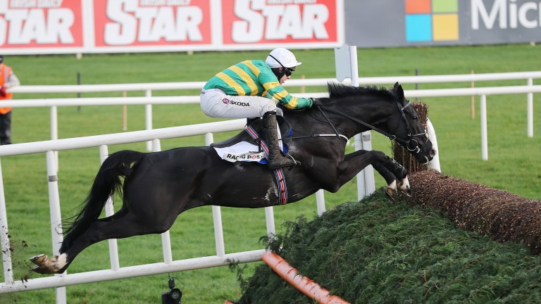 Le Richebourg: a fine jumper of a fence