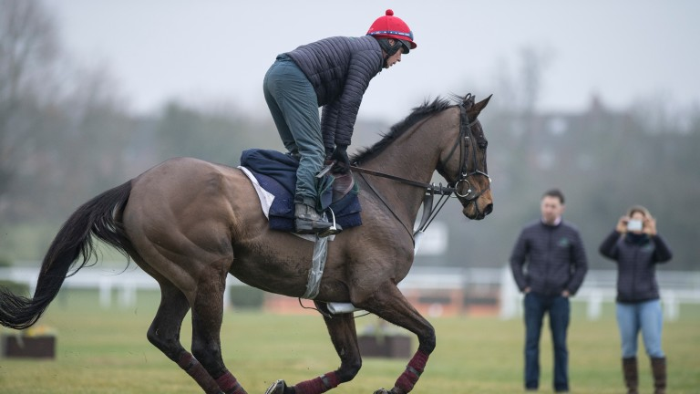 Special Tiara is watched by Henry de Bromhead and owner Sally Rowley-WilliamsCheltenham 12.3.18 Pic: Edward Whitaker