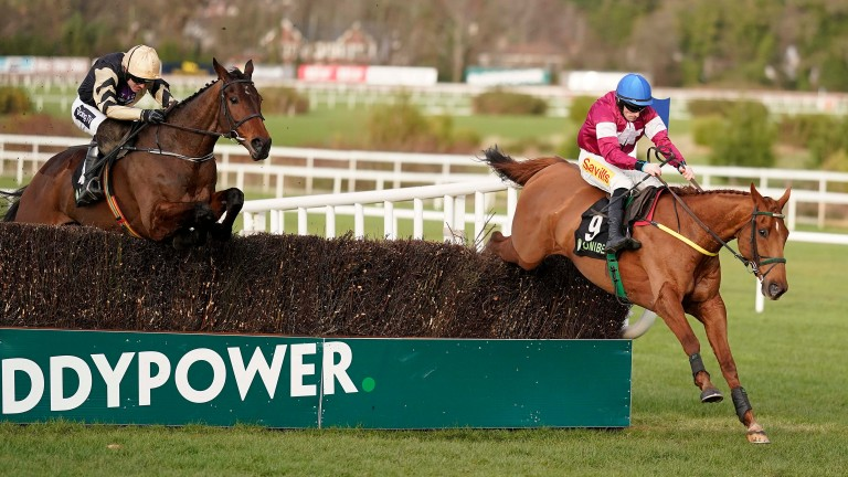 Road To Respect: jumping the last ahead of Bellshill in the Unibet Irish Gold Cup but ultimately lost out