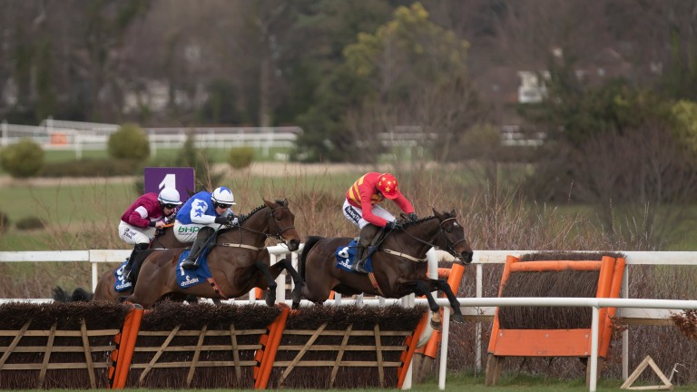 Klassical Dream warmed up for Cheltenham victory by winning at the Dublin Racing Festival last year